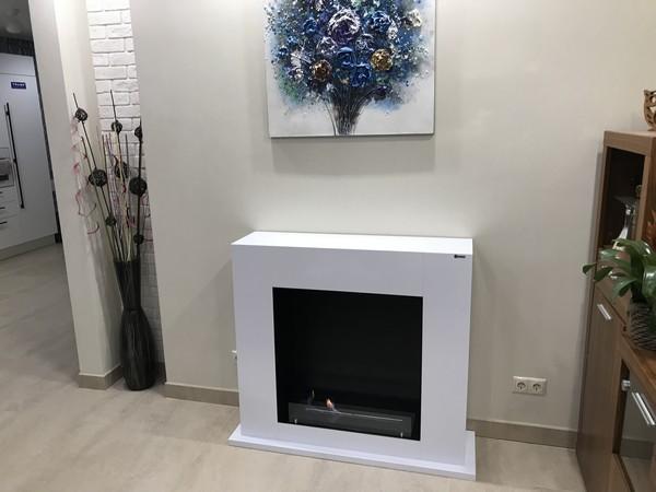 биокамин для квартиры и дома фото