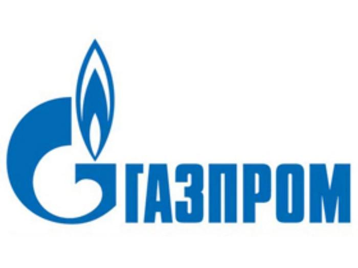 биокамин Kronco в офисе Газпрома